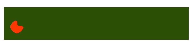 zielona_logo_horizontal_big2